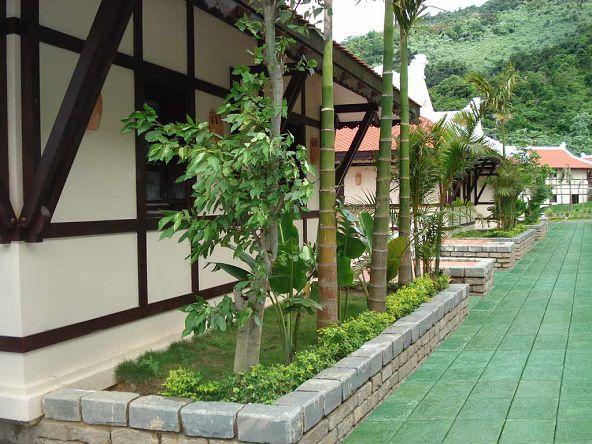 Xu hướng chọn gạch lát sân vườn hiện nay?
